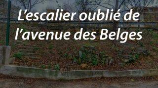 L'escalier oublié de l'avenue des Belges (M.a.j. au 23 avril 2016)